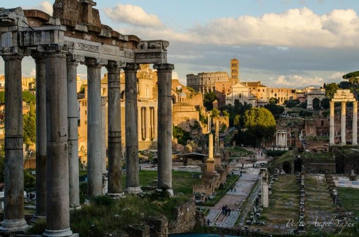 Roma-42