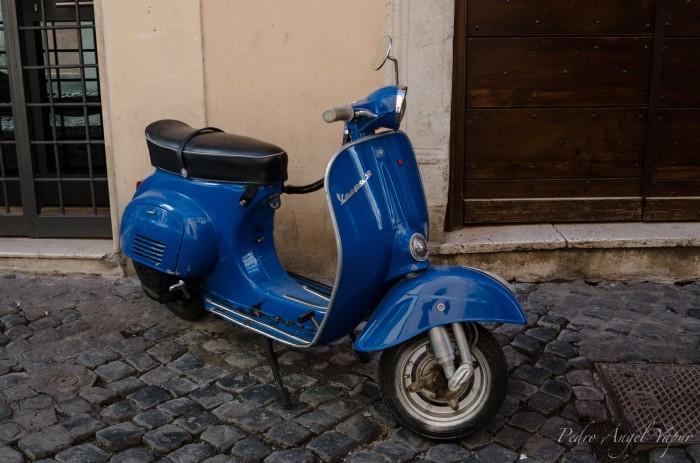 Roma-48