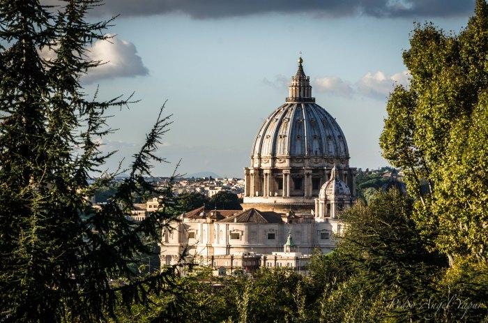 Roma-50